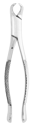 Picture of Extracting Forceps #23 Lower 1st and 2nd Molar, Horn Beak, Straight Handle - J&J Instruments