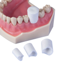 Retraction Caps Medium Size 3 120/Pk - Premier