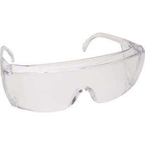 ProVision End-Fog Clear Frame Eyewear - Palmero